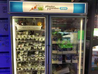 Vitrina refrigerada/congelador para comercio