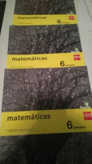 Libros Matematicas 6* de primaria