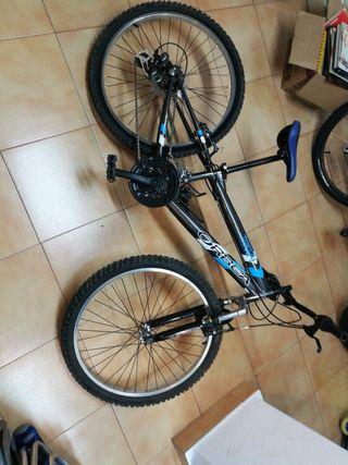 bici orbea myo24