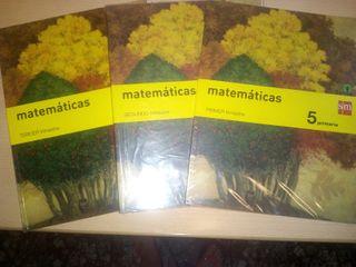 Primaria, Libros de 5° de primaria.