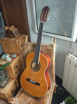 Guitarra Carmino AG605