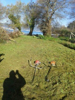 Jardinero-Mantenimiento-Desbroce