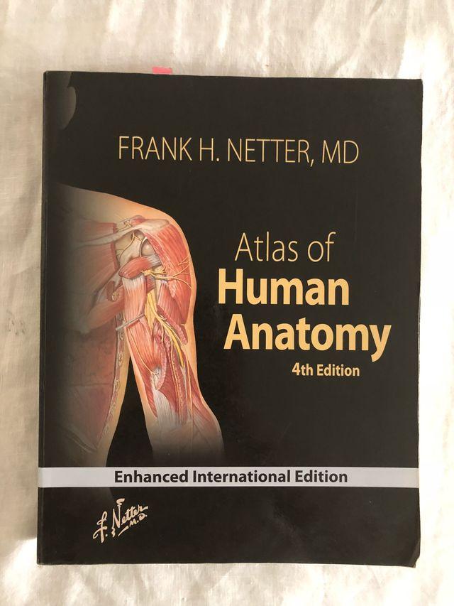 Atlas de Anatomía de Netter de segunda mano por 30 € en Madrid en ...