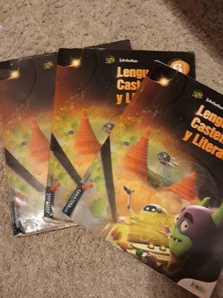 Libros Lengua Castellana y literatura 6° primaria