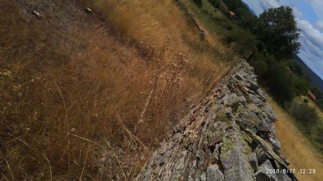 piedra de musgo