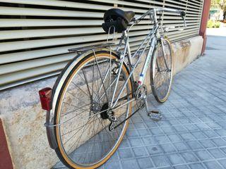 Bicicleta clasica paseo