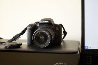 Canon EOS 750D + Canon EF-S 18-55 1:3.5-5.6 III