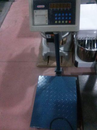 bascula plataforma con ticket 500kg