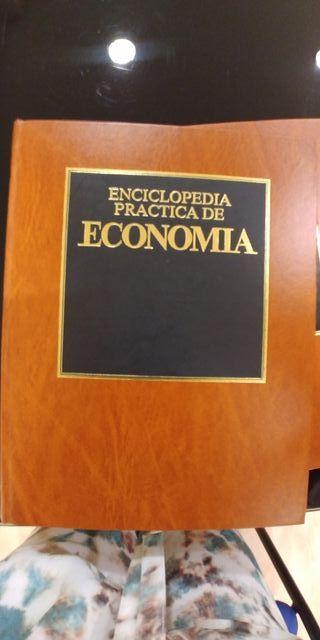 Enciclopedia practica de la economía