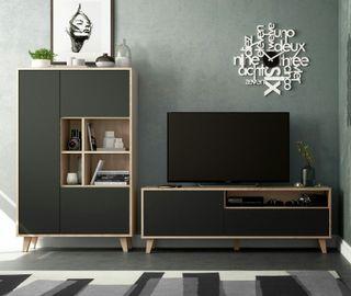 Conjunto de muebles para salón retro moderno