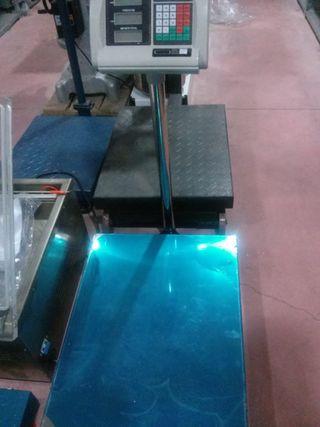 balanza bascula plataforma 300kg