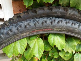 Neumáticos IRC Piranhapro y Hutchinson Rock
