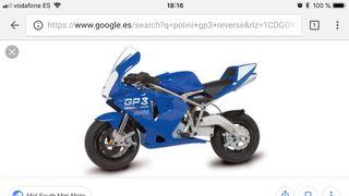 Mini moto polini gp3 reverse