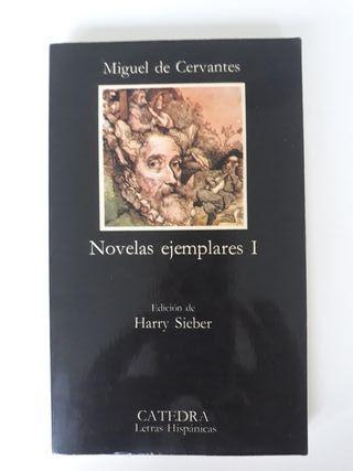 novelas ejemplares: miguel de Cervantes