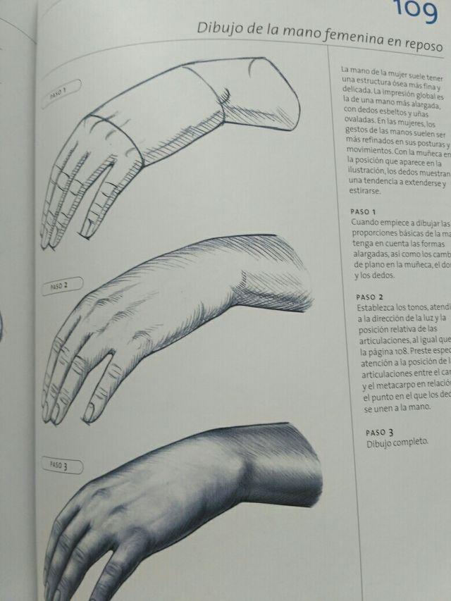 Anatomía para el artista. Nuevo de segunda mano por 10 € en San ...