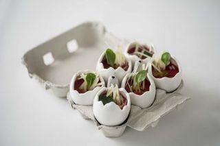 Huevos Rotos De Cerámica Para Degustaciones
