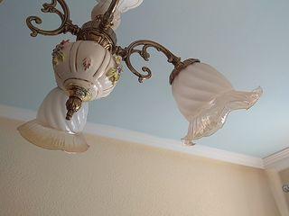 Tulipas de lámpara