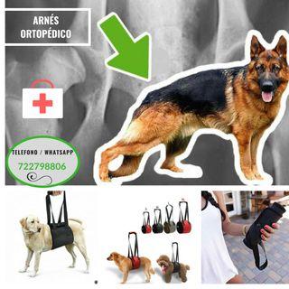 Arnés Ortopédico para perros NUEVO (VARIAS TALLAS)