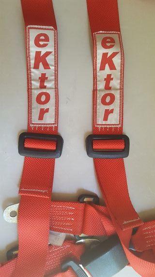 arnés cinturón de seguridad ektor