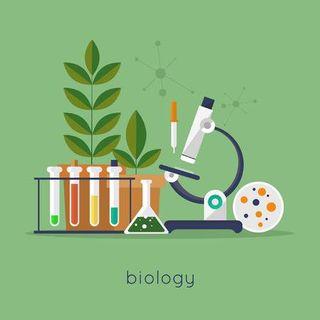 Clases de Ciencias, Biología, Química