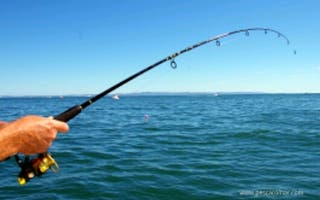 se busca grupo o compañeros de pesca
