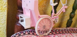 bicicleta taxi chabel