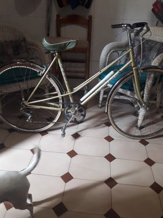 bicicleta vitach