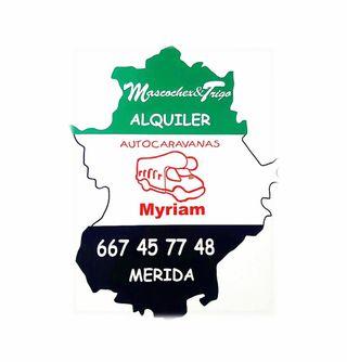 Alquiler autocaravanas 6/7 plazas