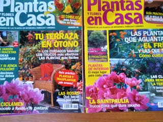 REVISTA PLANTAS EN CASA