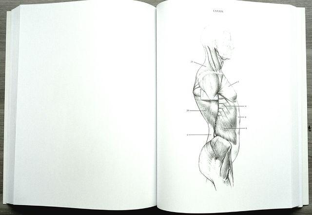 Jeno Barcsay: Anatomy for the artist de segunda mano por 8 € en ...