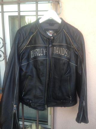 Cazadora mujer Harley Davidson