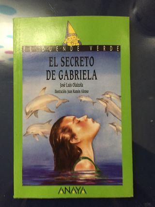 El secreto de Gabriela.