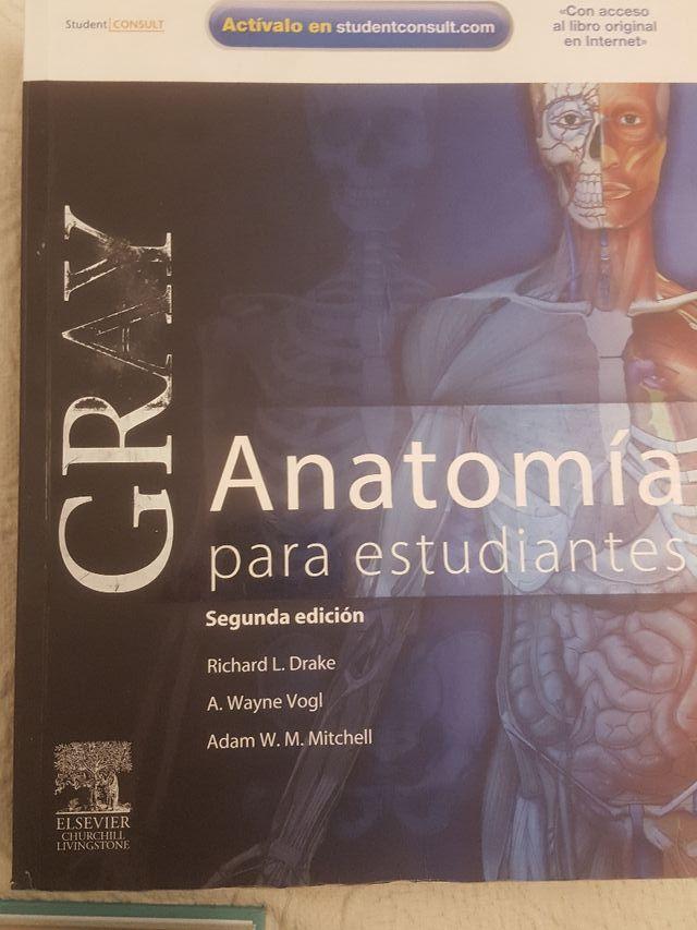 Anatomía de Gray de segunda mano por 40 € en Madrid en WALLAPOP