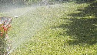 jadinero paisajista/ mantenimiento piscinas
