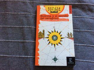 Libro Endrina y el Secreto del Pelegrino