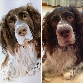 Retratos de mascotas realistas