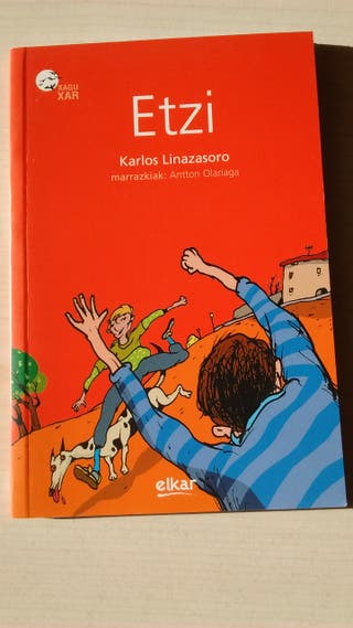 libro lectura-gazteen literatura