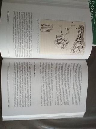 libro prehistoria II UNED