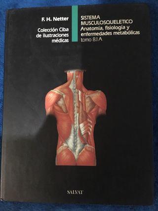 Libros de anatomía y traumatología