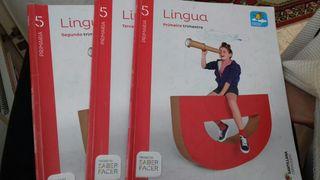 libro de lingua galega 5 primaria Santillana