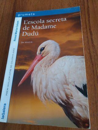 L'escola secreta de Madame Dudu