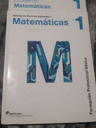 LIBRO DE MATEMÁTICAS 1 FPB