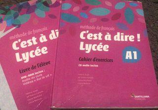 Libros Frances Santillana