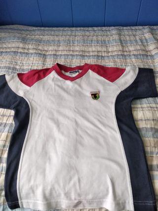 camiseta gimnasia colegio El Valle