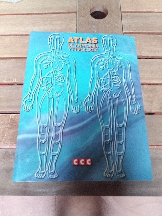 Atlas de anatomia y fisiología de segunda mano por 15 € en ...