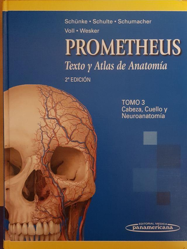 Prometheus cabeza y cuello de segunda mano por 60 € en Valencia en ...