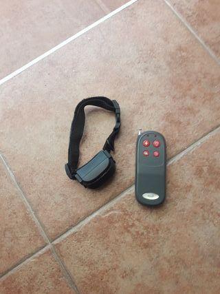 accesorio para perro