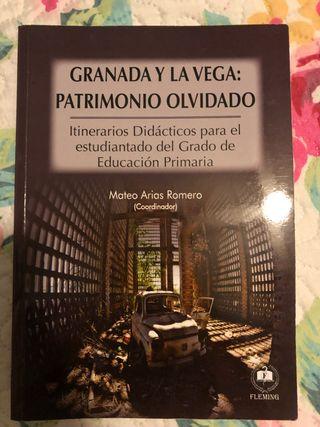 GRANADA Y LA VEGA: PATRIMONIO OLVIDADO