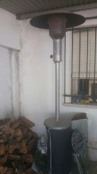 estufa de seta