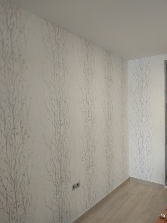 Alisado de paredes techos y pintura en general